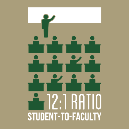 12:1 ratio student-to-faculty