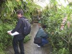 greenhouse-fieldtrip-003.jpg
