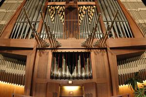 organ1016.jpg